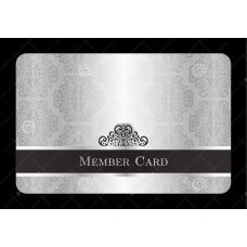 Savvy Silver Membership